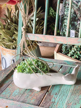 Hanging Whale Planter - Baycreek & Co