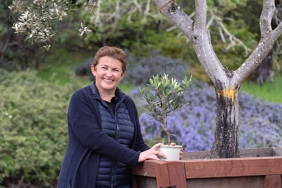 Corine with Gifted Root Olive Tree