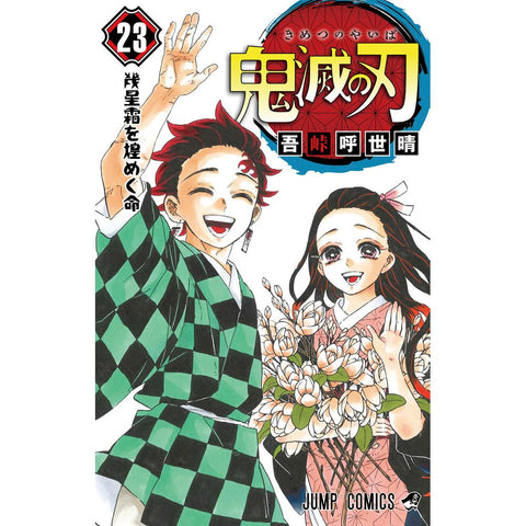 Demon Slayer: Kimetsu no Yaiba 23 - Japanese Edition / Koyoharu Gotoge (Shueisha)
