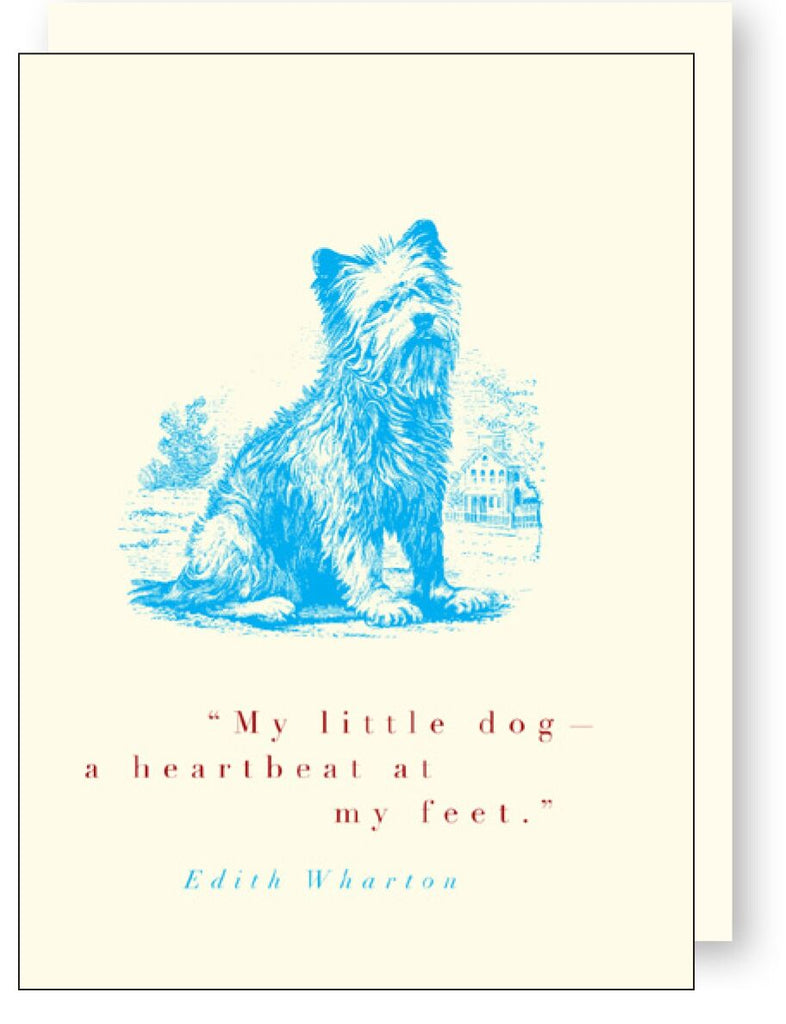 Animal Quote Blue Dog