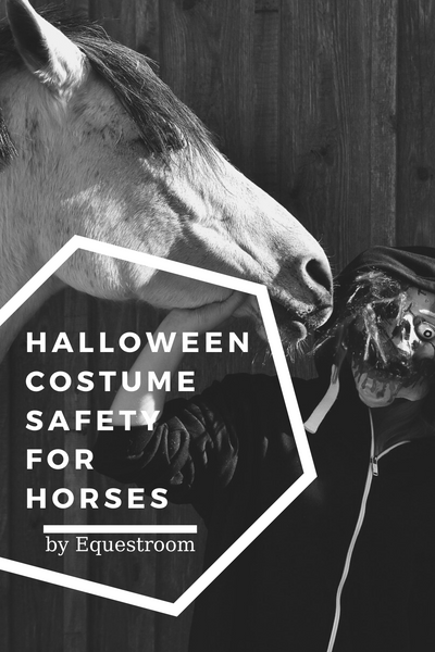 HALLOWEEN COSTUME SAFETY FOR HORSES