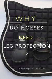 5 Reasons Why Your Horse Needs Leg Protection