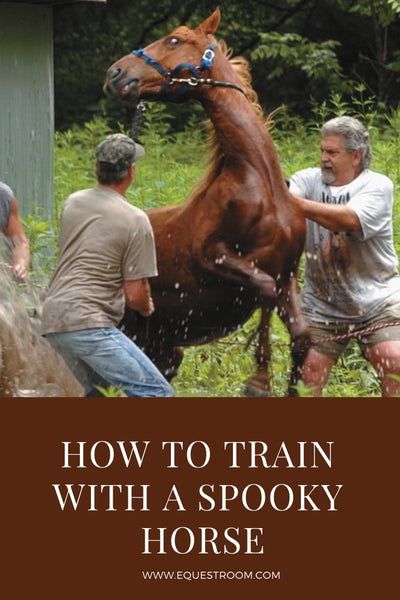 HOW TO TRAIN A SPOOKY HORSE