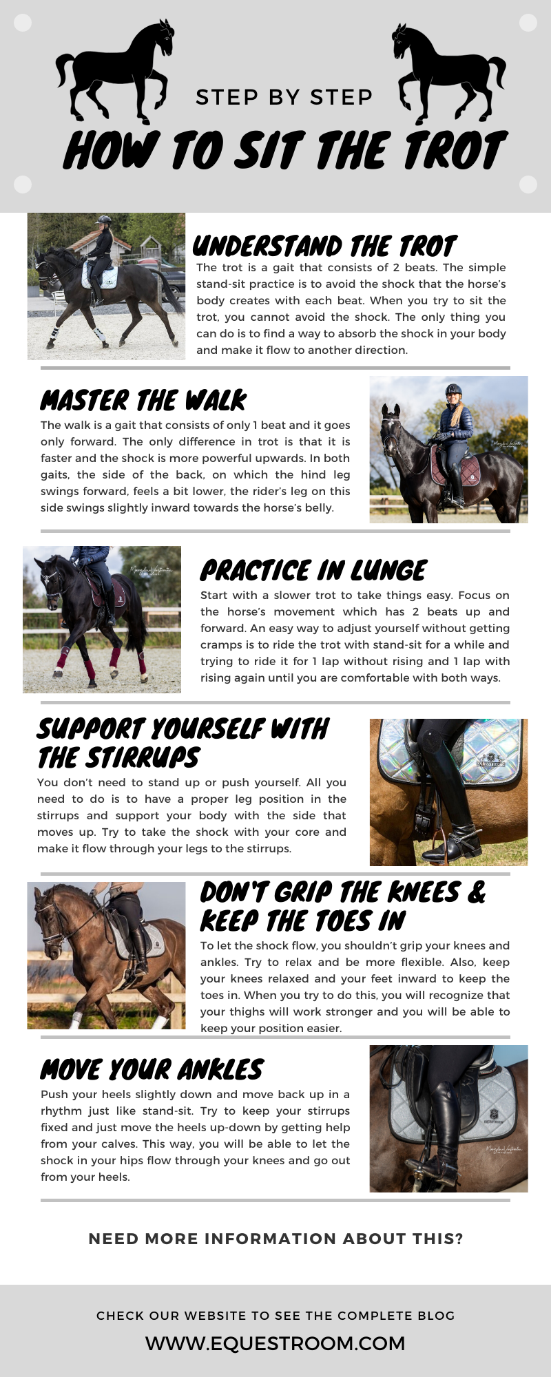 How To Sit the Trot by Equestroom Infographics