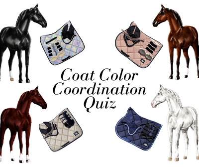 Coat Color Coordination Quiz