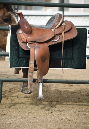 Burgundy Saddle Pad Set