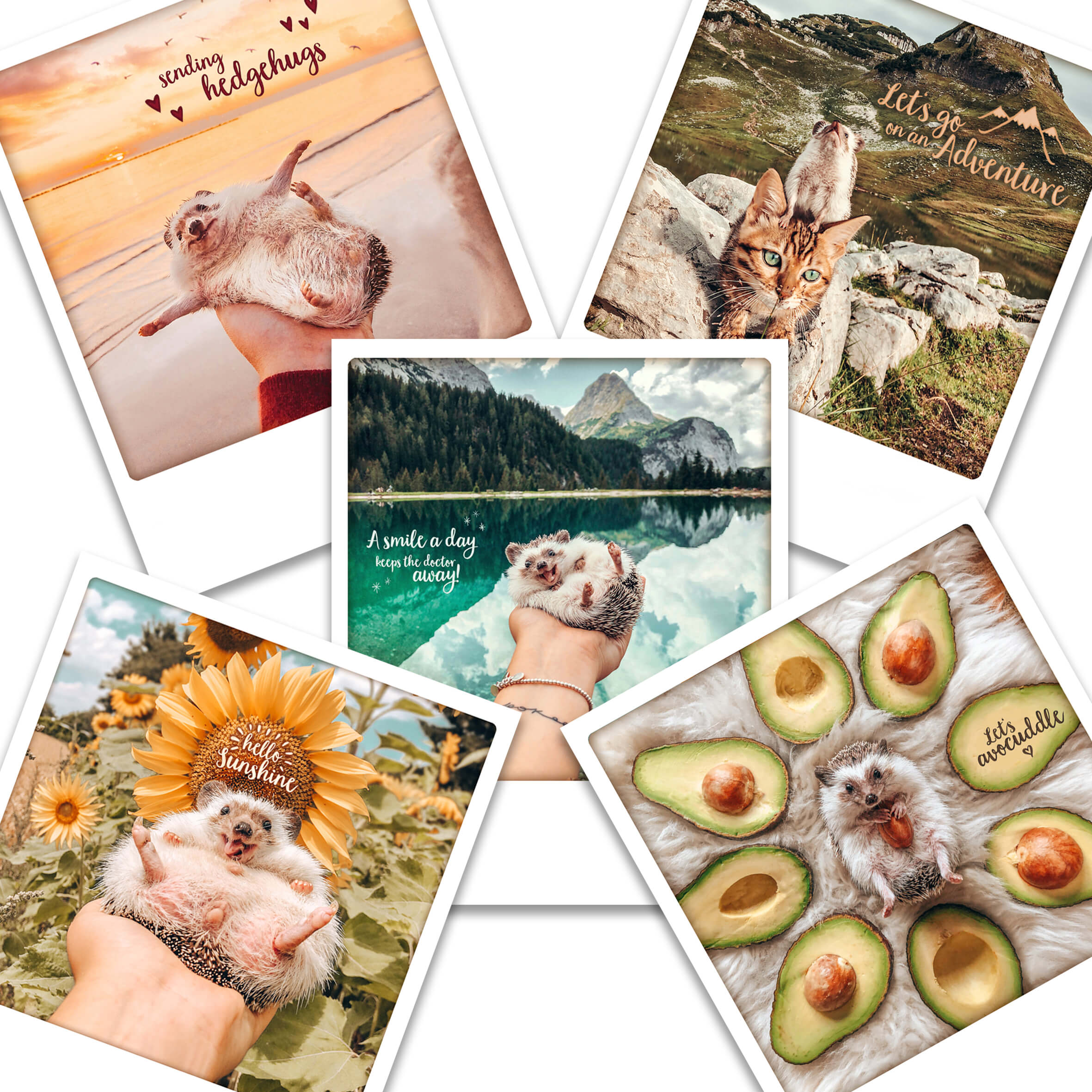 Happy Postcards (Set of 5)