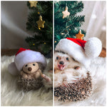 Mr.Pokee Winter Holiday Lightroom Presets for Christmas photos (4378066518125)