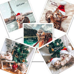 Holiday Postcards (Set of 5)