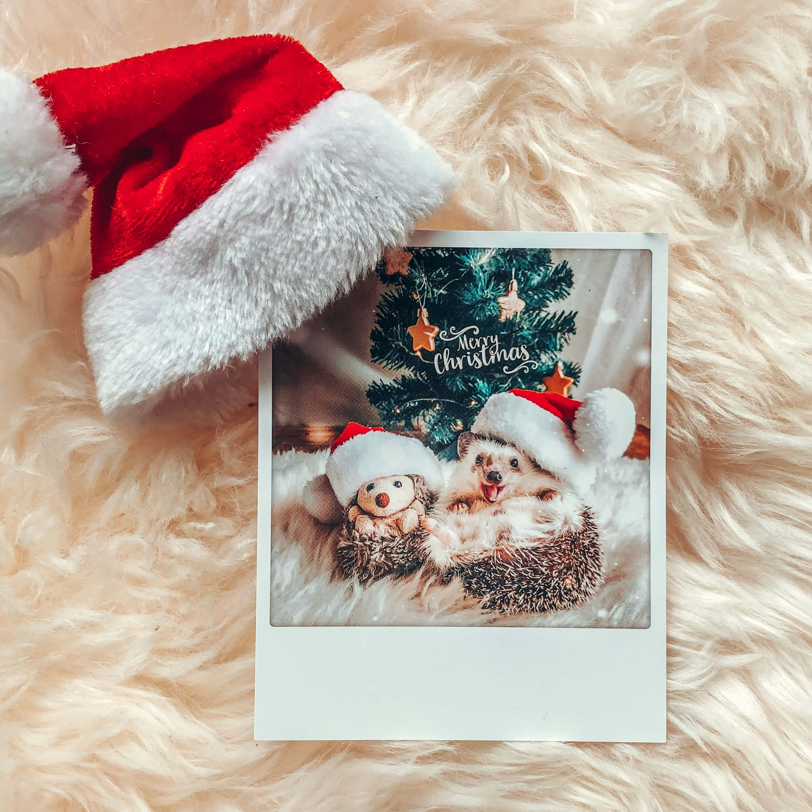 Holiday Postcards (4288182681709)