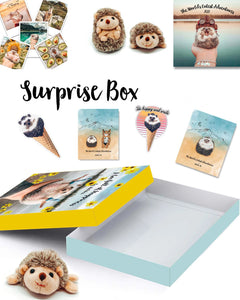 Mr.Pokee Surprise Box