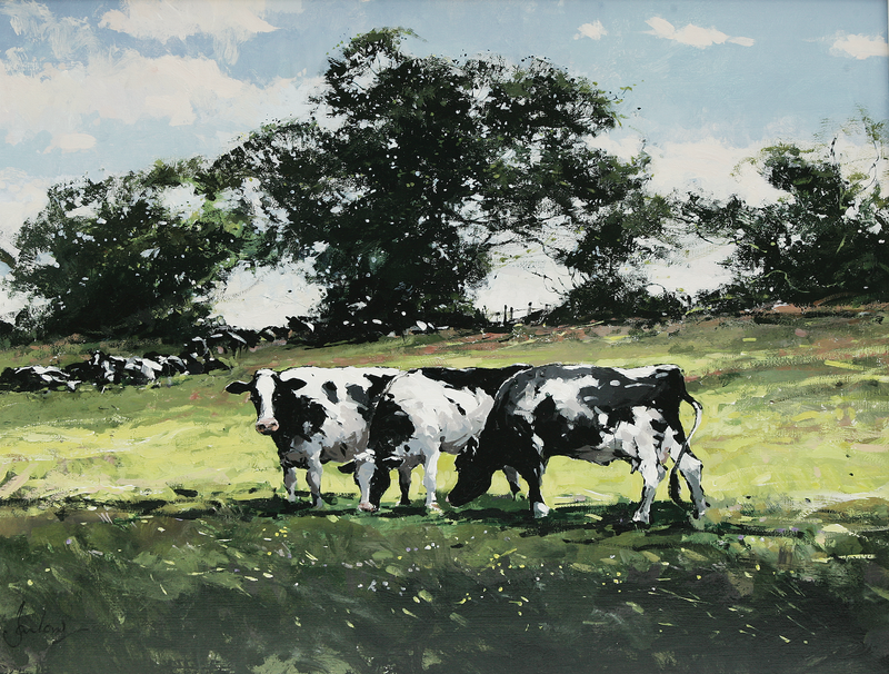 Cattle At Walsingham - Paper 25 x 30cm