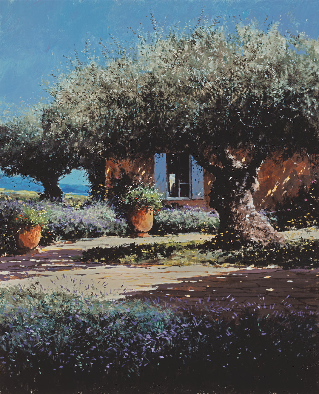 Garden With Olive Tree