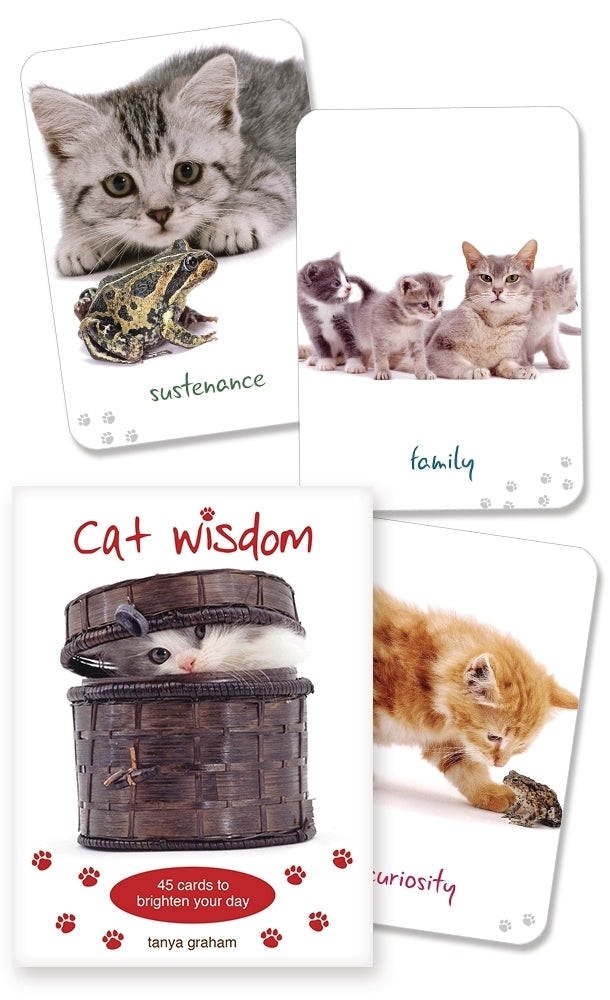 CAT WISDOM CARDS (INGLES)