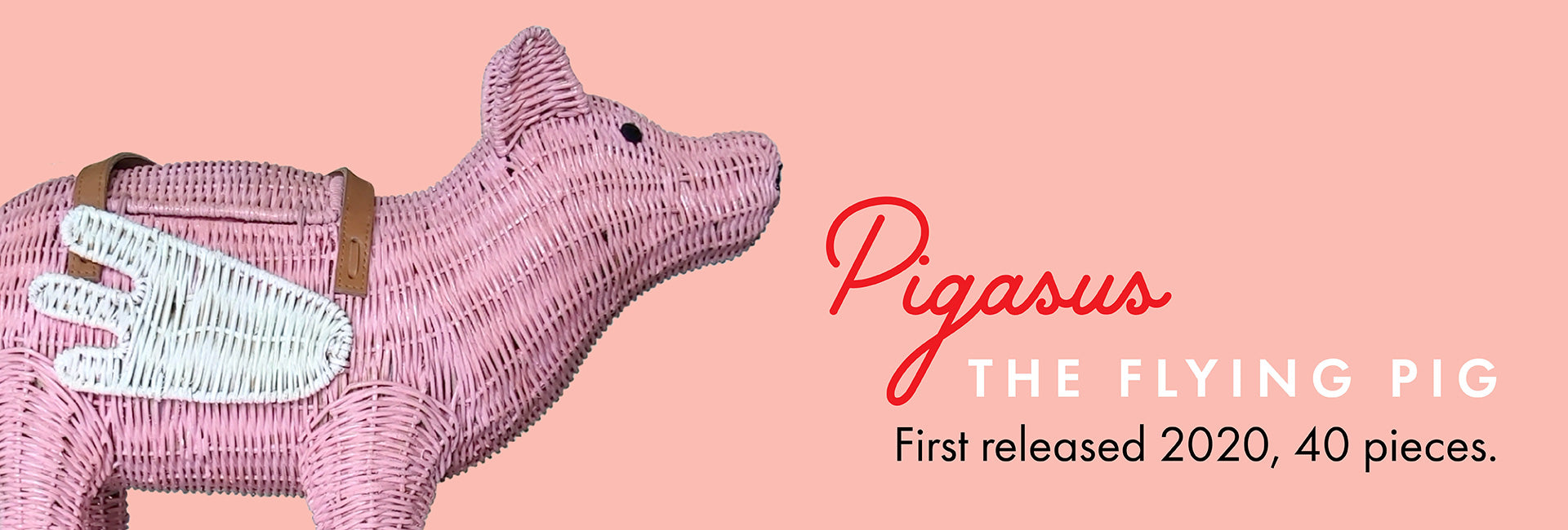 Pigasus the flying pig. First released 2020, 40 pieces.