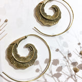Gold Colour Brass Feather Spiral Earrings