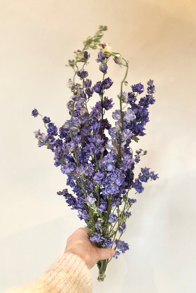 Dried Larkspur Bunch Lilac