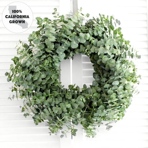 Fresh Handmade Baby Blue Eucalyptus Wreath