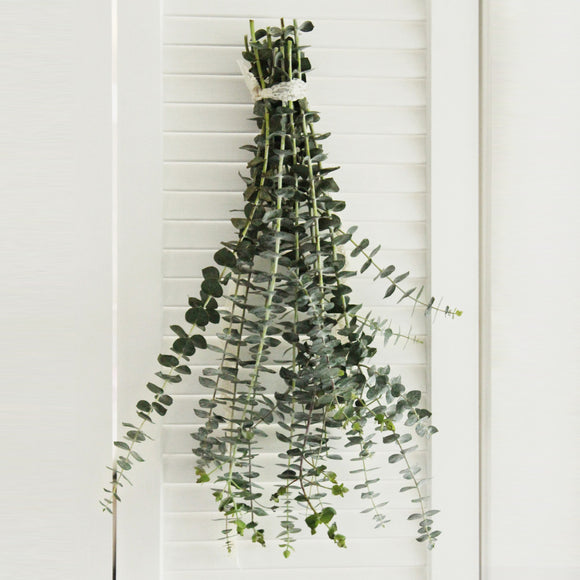Baby Blue Eucalyptus - DIY Wedding  | Showers  | Event  | Holidays