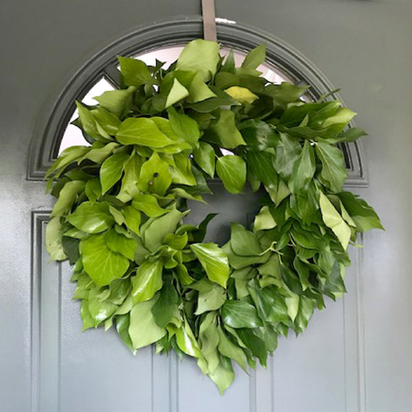 Fresh Handmade Bush Ivy Wreath