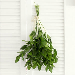 Fresh Cut Israeli Ruscus - 10 stems (free shipping) - DIY Wedding | Showers | Event | Holidays