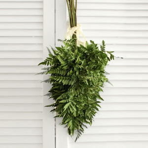 Fresh Leather Leaf Fern (free shipping) - DIY Wedding | Showers | Event | Holidays