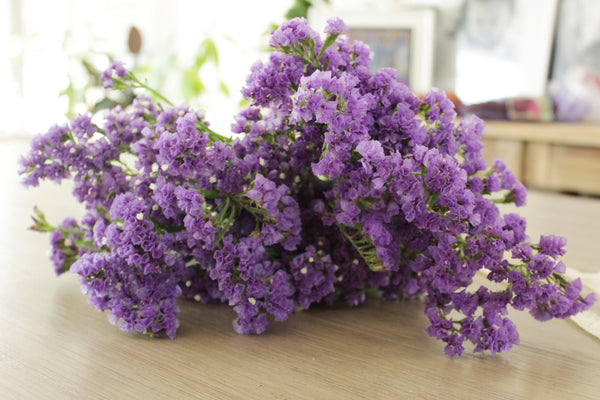 Fresh Purple Statices (Limonium) 10-12 stems (free shipping) - DIY Wedding | Showers | Event | Holidays