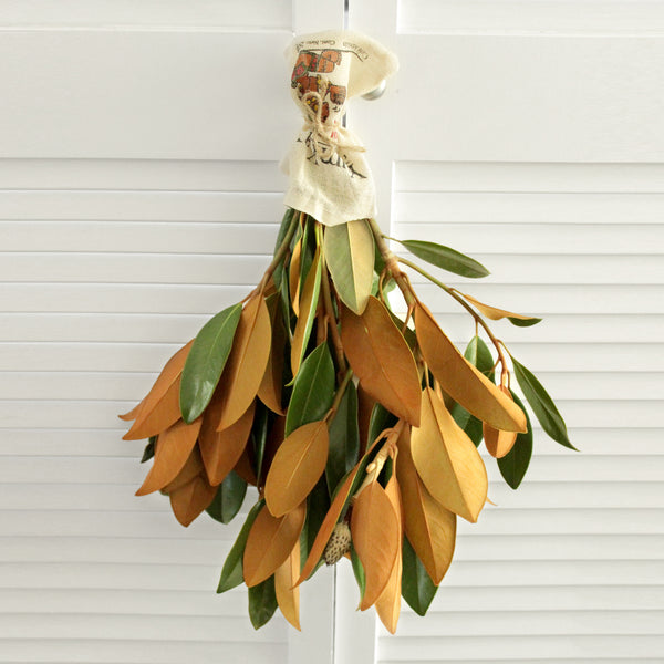 Fresh Magnolia branches - 5 stems (free shipping) - DIY Wedding  | Showers  | Event  | Holidays