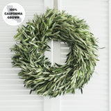 Fresh Handmade Olive Branch Wreath