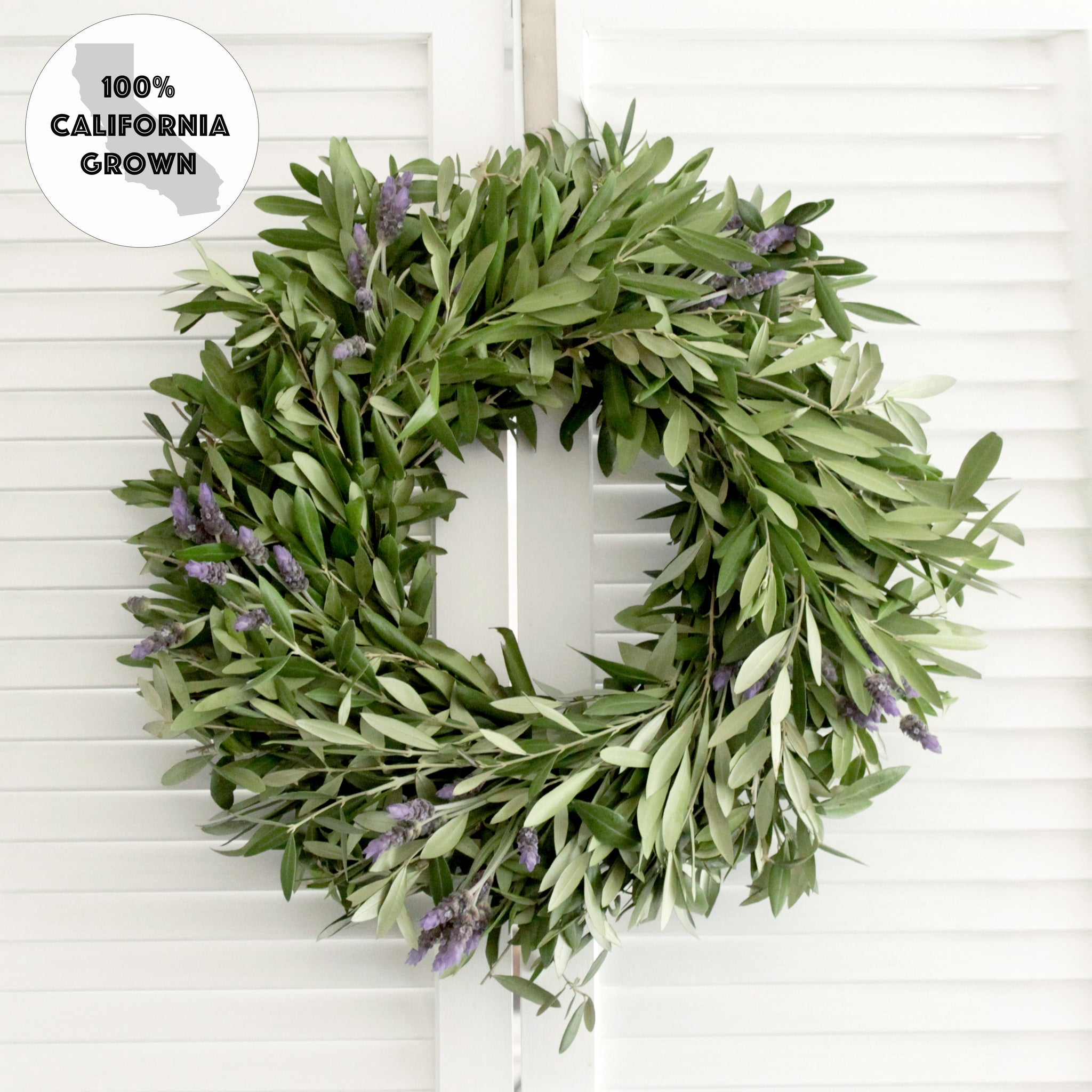 Wreath 95f olive branch