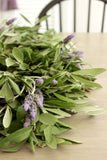 Fresh Olive Branch & Lavender Wreath