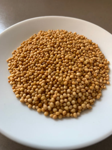 yellow-mustard-seeds-organic