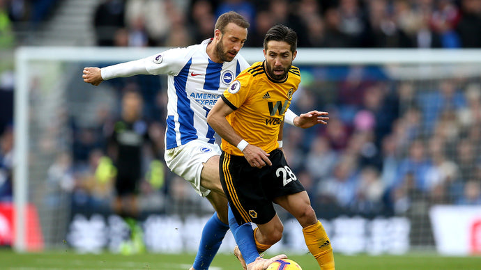 Wolves v Brighton: History & Preview