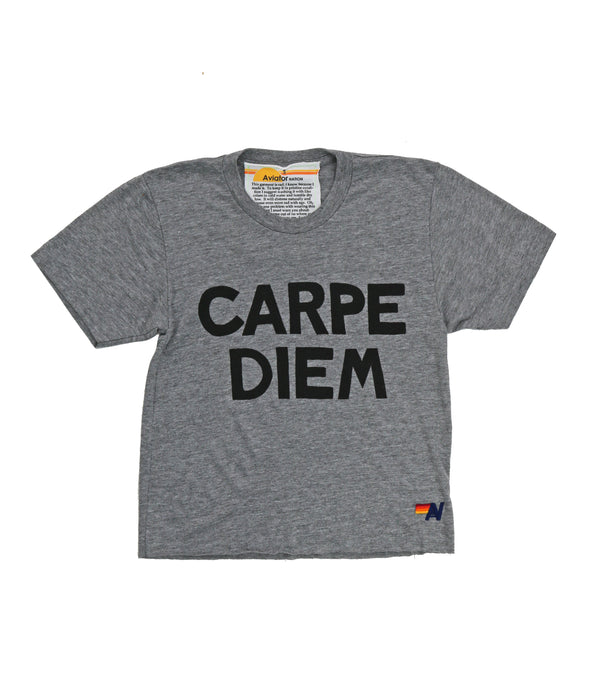 Aviator Nation Carpe Diem - Boyfriend Tee Heather Grey