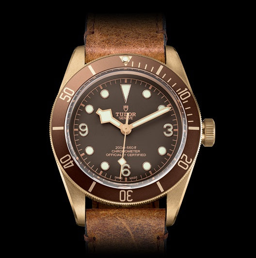 Tudor Bronze Black Bay
