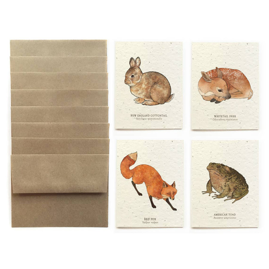 The Bower Studio - Forest Wildlife Cards - Set Of 8 Plantable Seed Paper