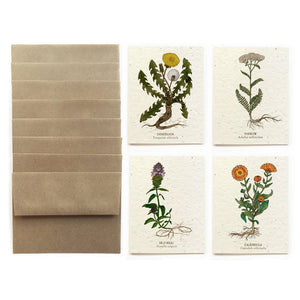 The Bower Studio - Medicinal Plants Cards - Set Of 8 Plantable Seed Paper