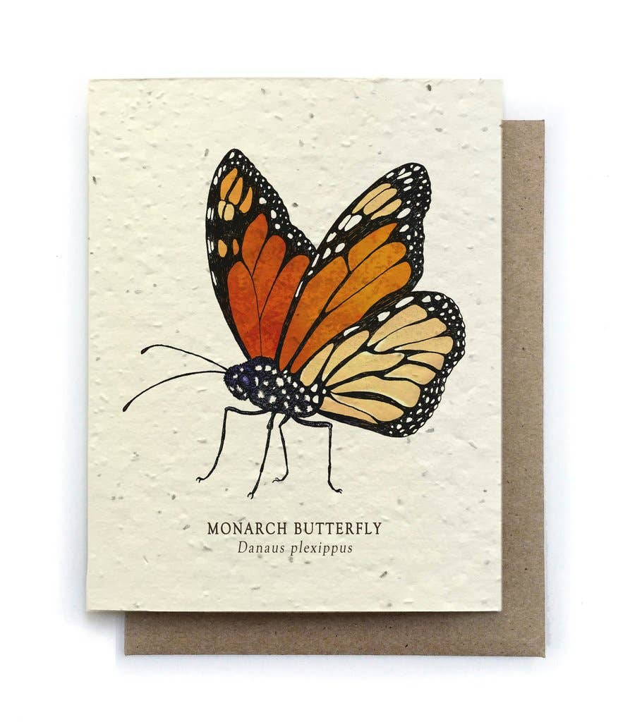 The Bower Studio - Monarch Butterfly Greeting Cards - Plantable Seed Paper