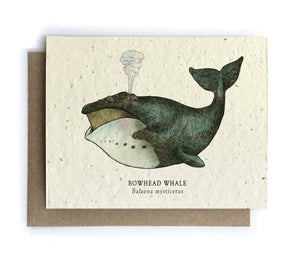 The Bower Studio - Whale Ocean Greeting Cards - Plantable Seed Paper