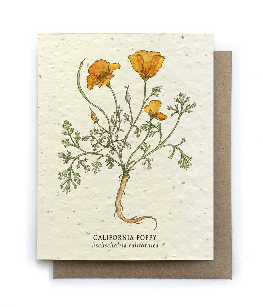 The Bower Studio - California Poppy Greeting Cards - Plantable Seed Paper