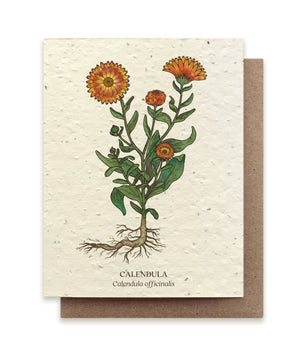 The Bower Studio - Calendula Botanical Greeting Cards - Plantable Seed Paper