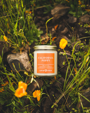 California Poppy Candle 9oz