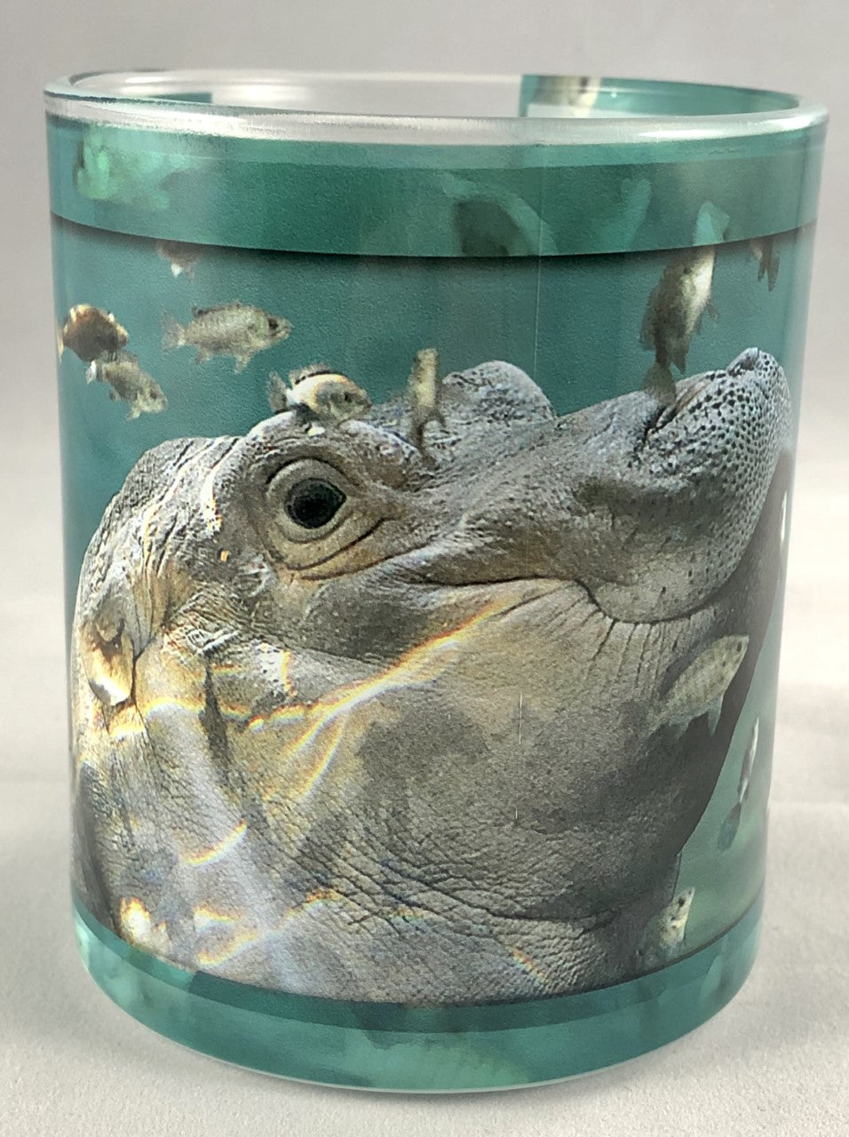 Mug Glass Fiona Swimming