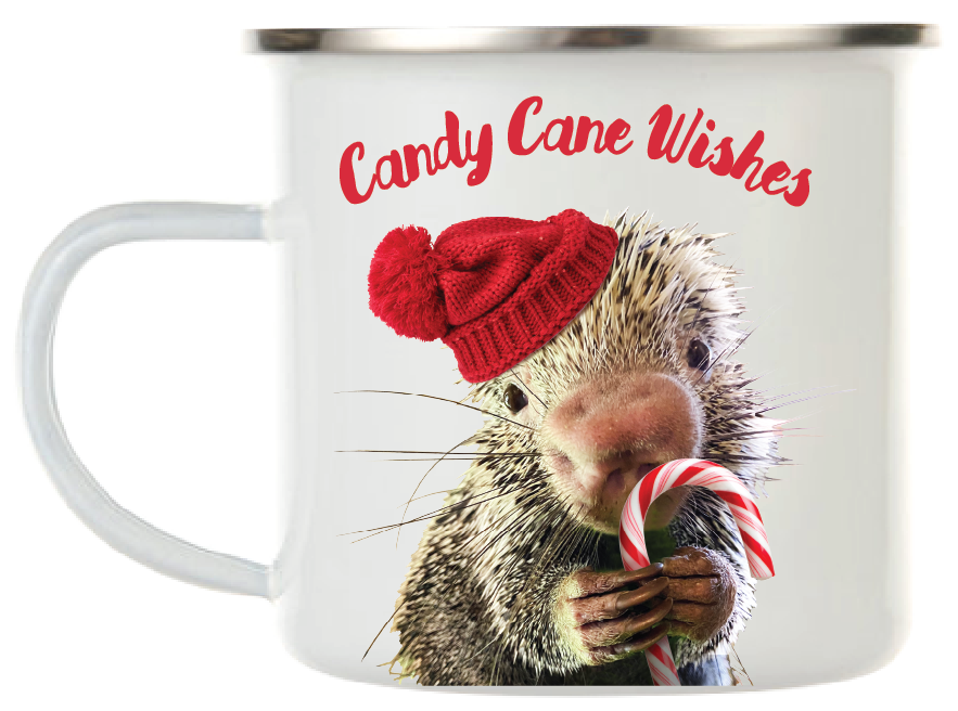 WISHES & KISSES CAMPER MUG