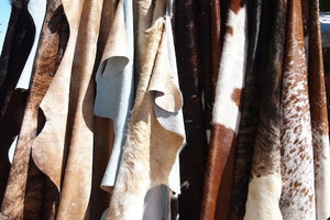 Everything You Need to Know About Cowhide Leather