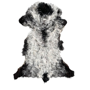 TIBETAN SHEEPSKIN | BLACK + WHITE - Lux & Hide