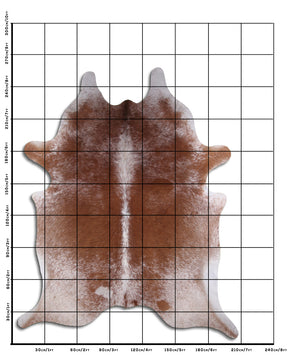 | CAITLIN | - BROWN SPECKLE COWHIDE RUG
