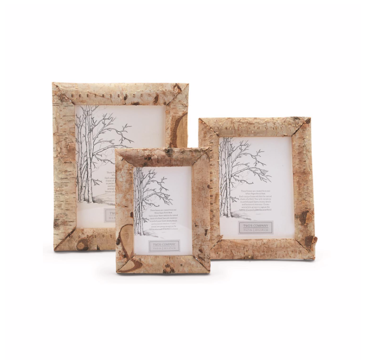 White Paper Birch Bark Frame