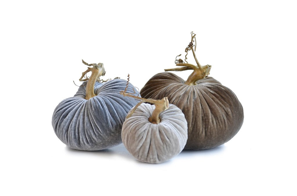 The Original Velvet Pumpkin