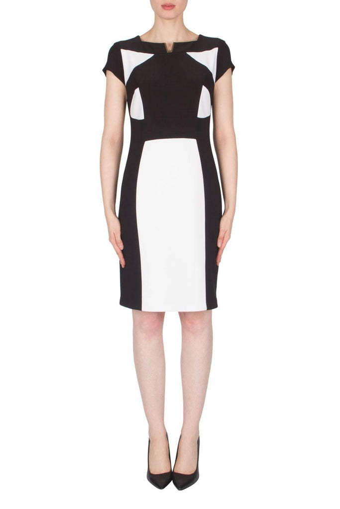 Joseph Ribkoff Color Block Sheath Dress